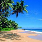 Шри-Ланка открывается